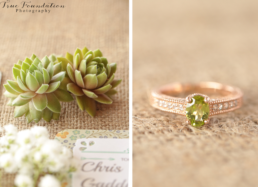 Weaverville-Wedding-Photography-North-Carolina-Brown-Farm-Venue-Pics-Detail-Shot-green