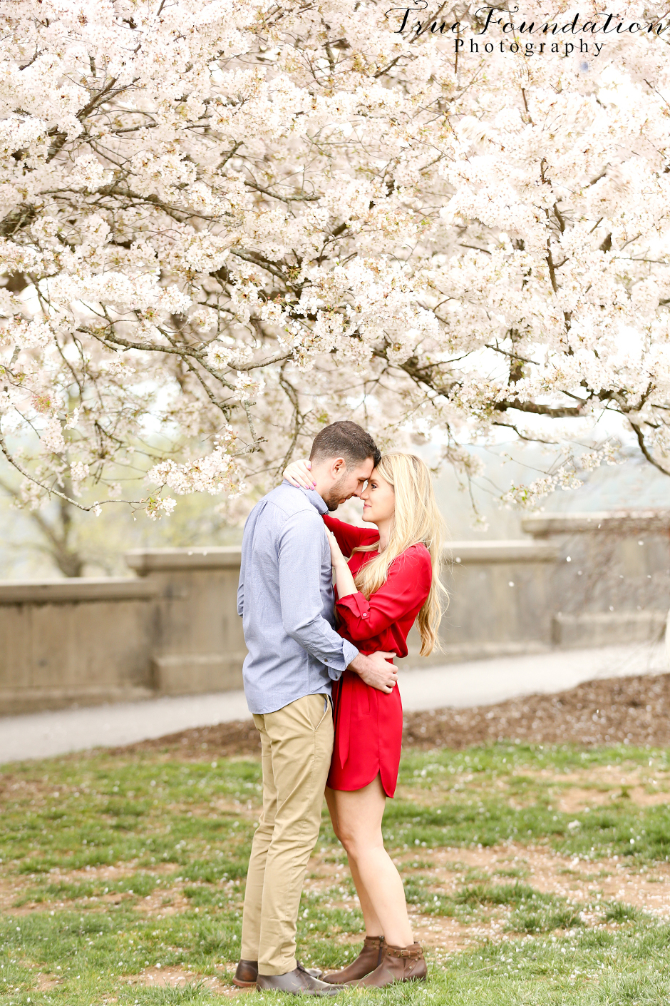 Hendersonville - NC - Engagement - Wedding - Photography - photo - photographer - Biltmore - Blooms - Asheville - Charlotte - Spring - session - shoot - couple (31)