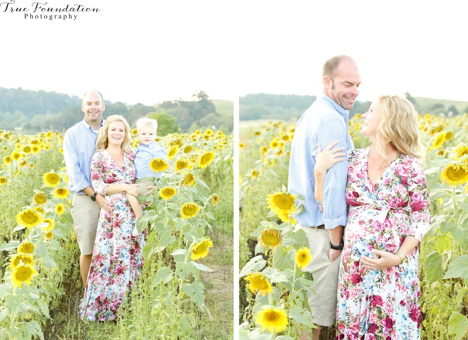 hendersonville-asheville-nc-maternity-photographer-photography-biltmore-estate-house-antler-hill-village-sunflowers-blooms-photos-blush-pink-dress-greenvi-18